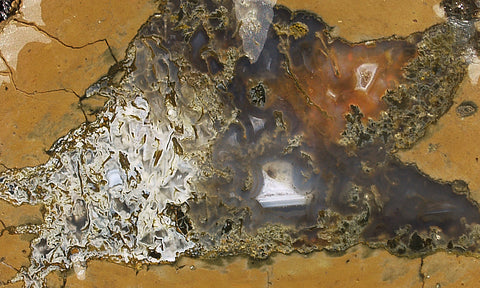 Priday Plume Agate  Rock slab 60