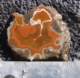 Condor Agate Rock slab 04