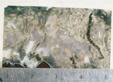 Green Moss Agate Rock Slab 010