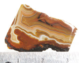 Condor Agate Rock Slab 52