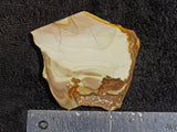 Willow Creek Jasper Rock  Slab 897