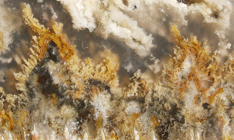 North Ridge Plume Agate Rock Slab 01