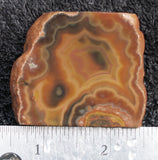 Condor Agate Rock Slab 63