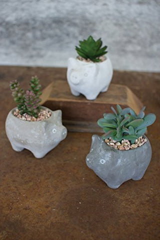 Set Of Three Artificial Succulents In Cement Pig Planters