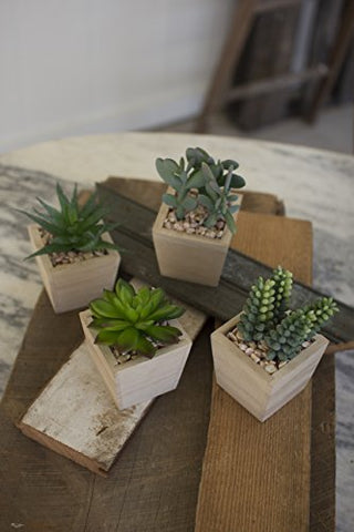 Set Of Four Artificial Succulents In A Wooden Pot - Les Spectacles French Industrial