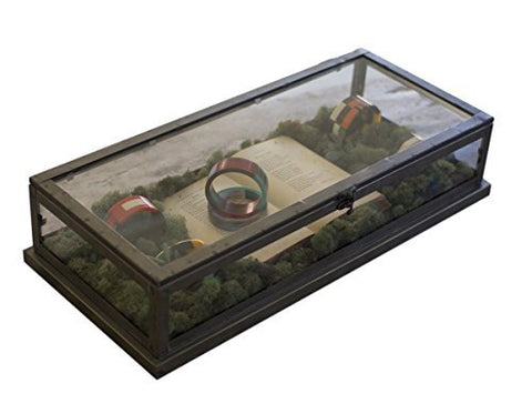 Glass And Metal Display Case - Les Spectacles French Industrial