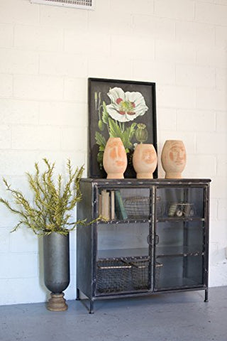Short Iron And Glass Apothecary Cabinet - Les Spectacles French Industrial