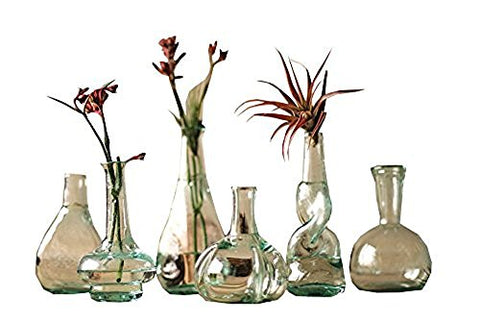 Set Of 6 Bottle Bud Vases - Les Spectacles French Industrial