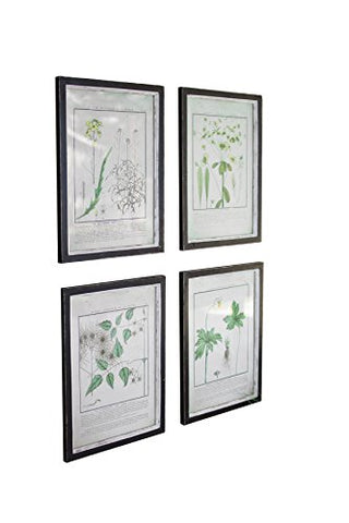 Set Of Four Framed Dandelion Prints Under Glass - Les Spectacles French Industrial