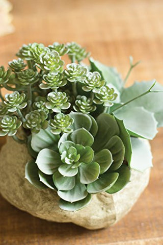 Artificial Assorted Succulent Garden In A Faux Rock Pot - Les Spectacles French Industrial