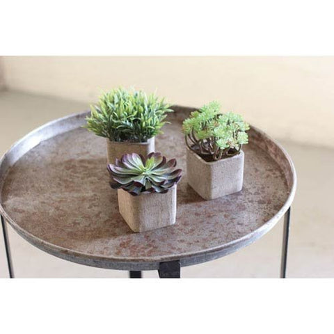 Set Of 3 Small Artificial Succulents In Square Pots - Les Spectacles French Industrial