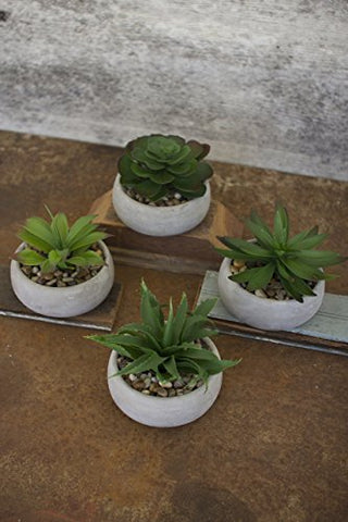 Set Of Four Artificial Succulents In Low Round Cement Pots - Les Spectacles French Industrial