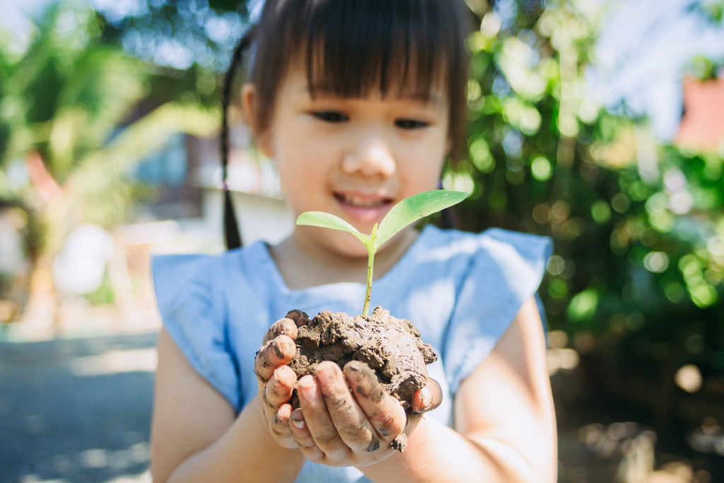 Young girl holding a plant growing from a small pile of dirt in her hands.
