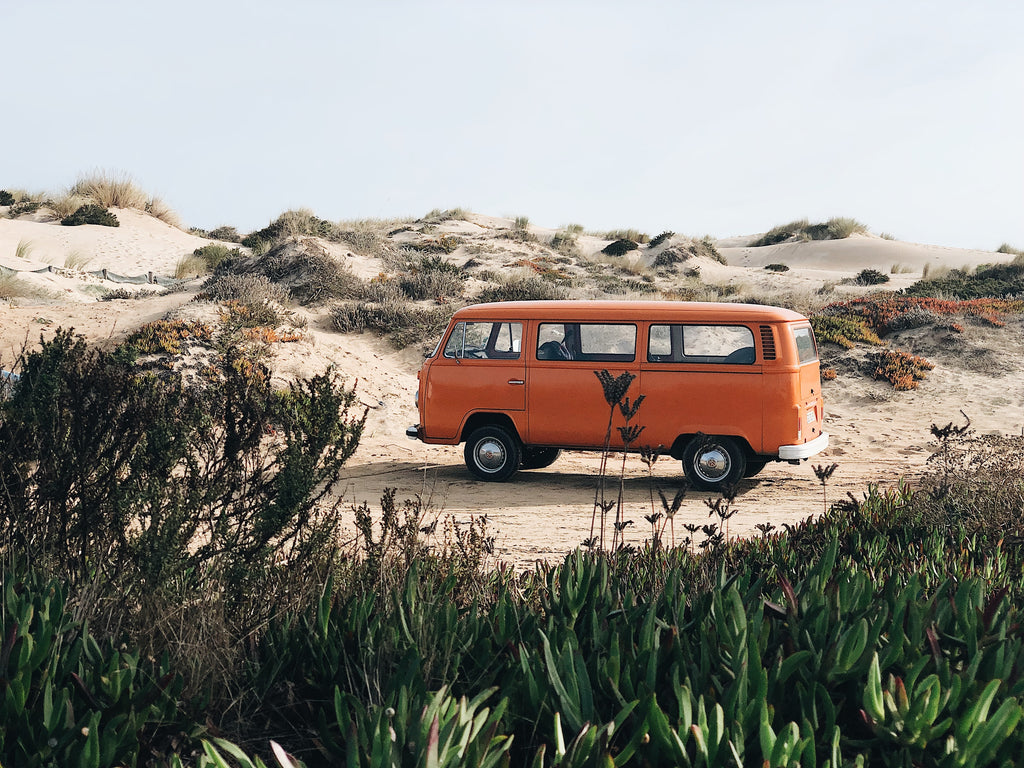 An orange van sits on a beach, with dunes behind it and greenery in front.