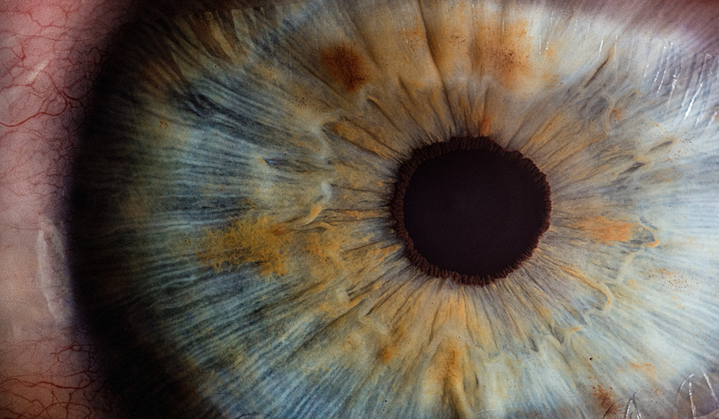 Zoomed image of an eye