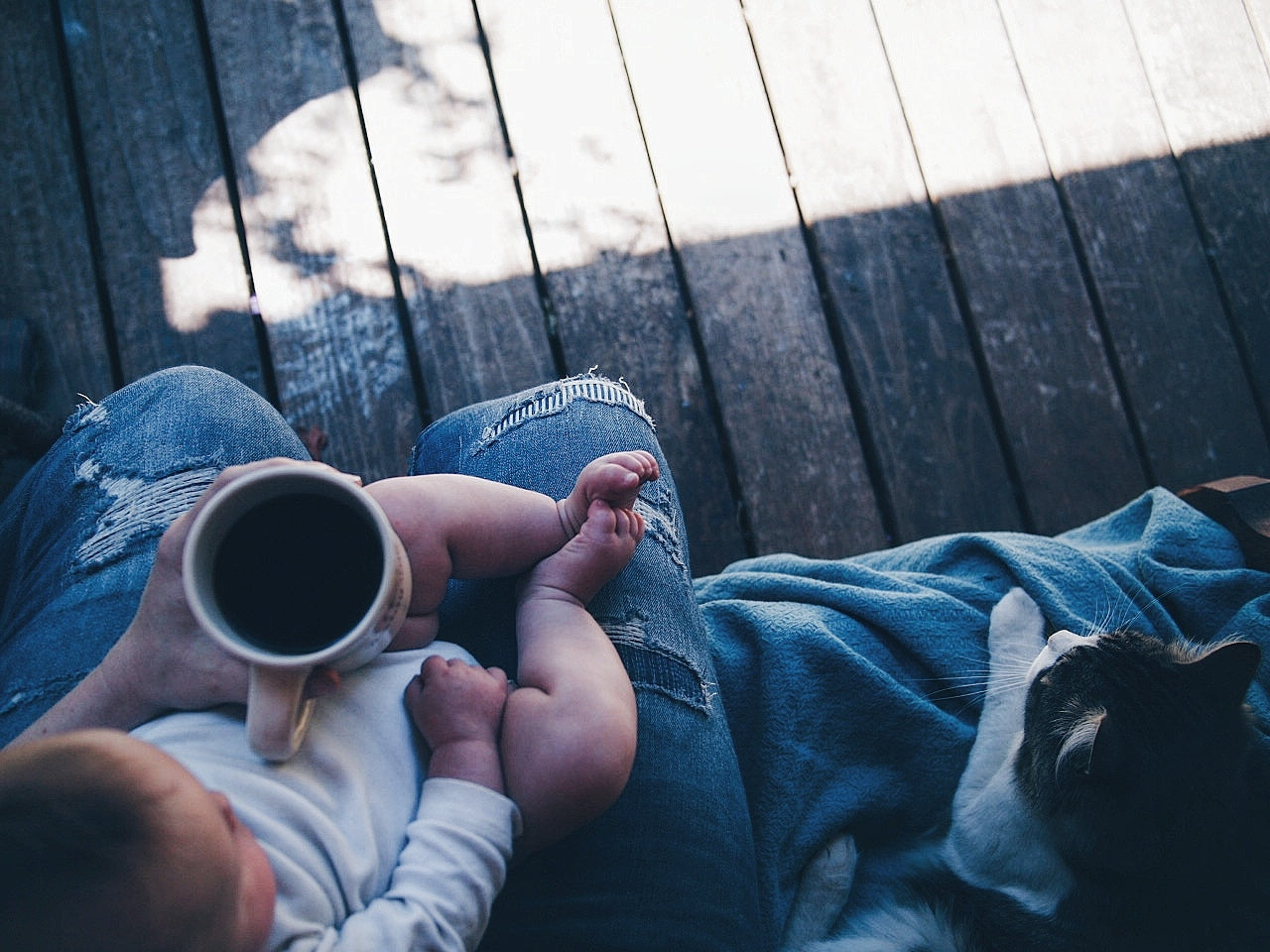 View from the top, we see a baby on a lap, with a cup of coffee in the parent's hand, and a cat sitting next to them