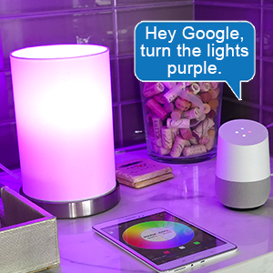google home voice control light bulb