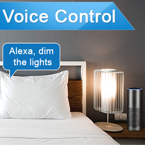 light that works with alexa