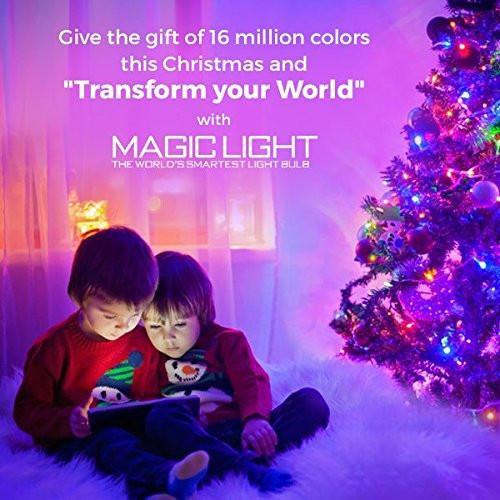 color changing holiday light
