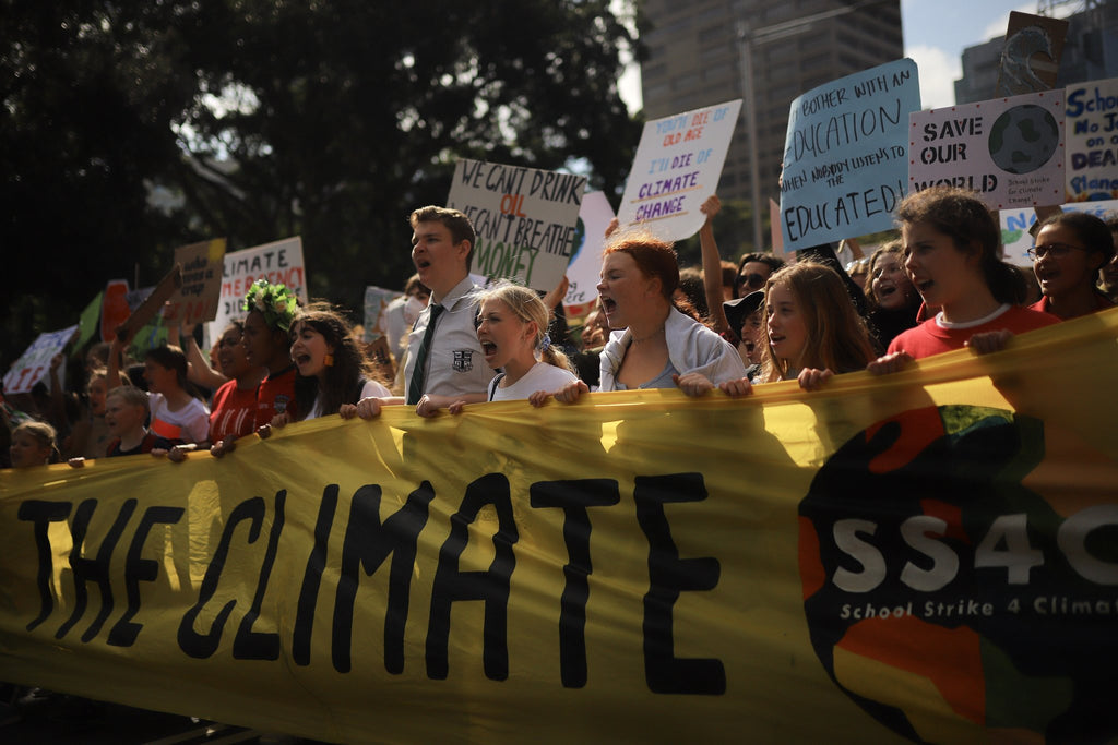 Climate Strike Protest