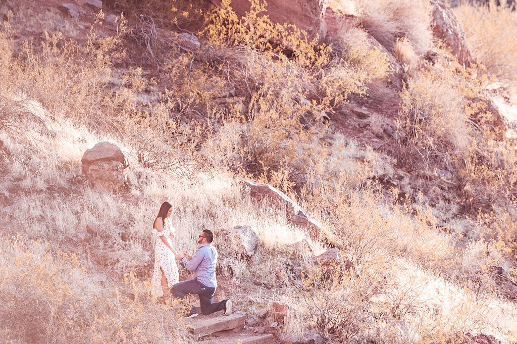 the perfect proposal Camelback Mountain