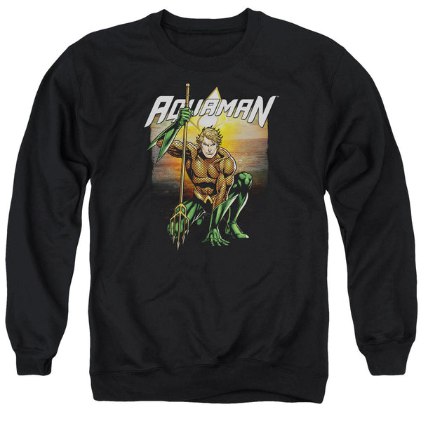 Aquaman: Beach Sunset Crewneck Sweatshirt - NerdArmor.com