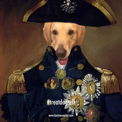 Admiral Lucky the Dog