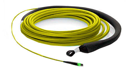12 fiber, 9µm OS1 Single Mode, (1x) MTP/male - (1x) MTP/male, Plenum - MTP Backbone Trunk Cable