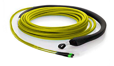 24 fiber, 9µm OS1 Single Mode, (2x) MTP/male - (2x) MTP/male, Plenum - MTP Backbone Trunk Cable