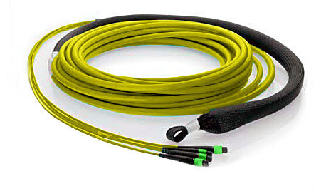 48 fiber, 9µm OS1 Single Mode, (4x) MTP/male - (4x) MTP/male, Plenum - MTP Backbone Trunk Cable