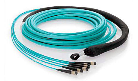72 fiber, 50µm OM3 10Gig Fiber, (6x) MTP/male - (6x) MTP/male, Plenum - MTP Backbone Trunk Cable