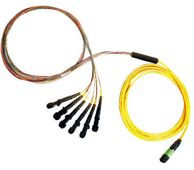 1 meter Single Mode 12 Fiber Ribbon MTP(male) - MTRJ Cable Assembly