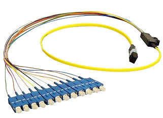 1 meter Single Mode 12 Fiber MTP(male) - SC/UPC Fan Out Cable Assembly