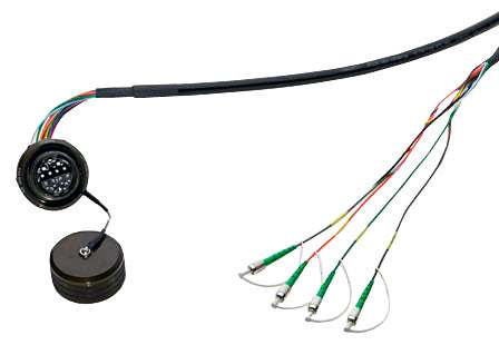 TFOCA II (Jam Nut Receptacle) to ST/UPC Single Mode Fiber Cable Assembly, 4 Channels, 10 Feet