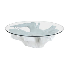White Teak Root Coffee Table