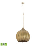 "Diamond Lighting 20"" Transitional Iron Melon Large LED Ceiling Lamp"