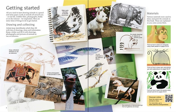 Usborne Art Ideas: Drawing Animals