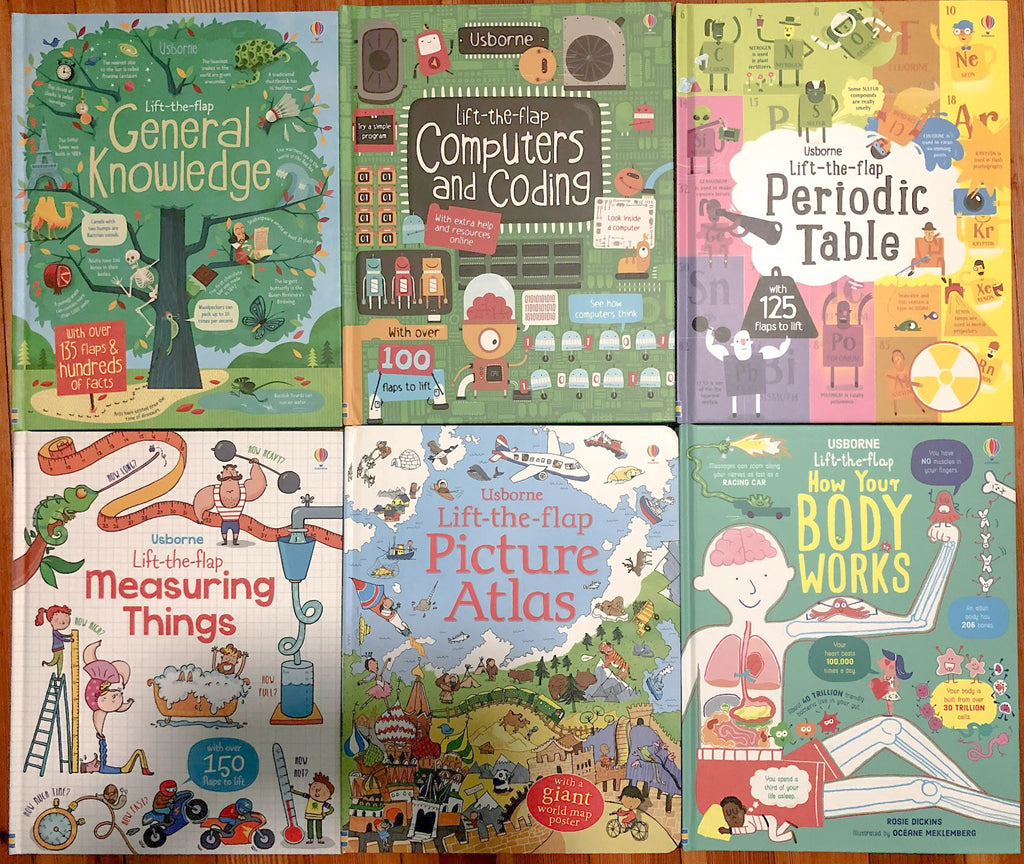 Usborne Lift-the-flap Book Set (6 books)