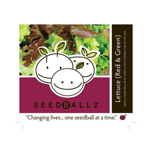 Seedballz Lettuce Mix - 8 Pack - evoxMarket