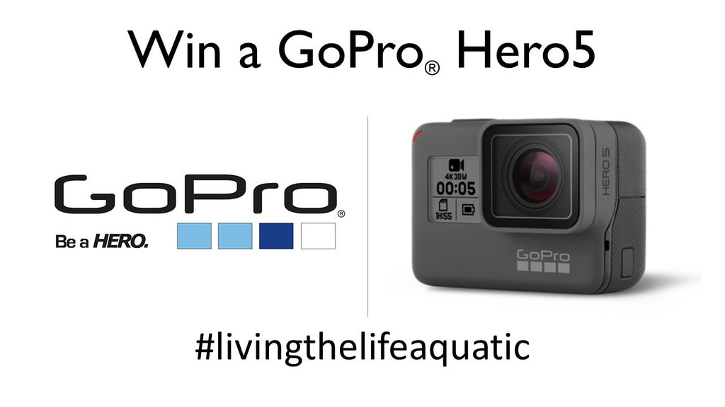 Win A GoPro Hero5!