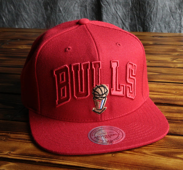 Chicago Bulls Mitchell & Ness 95-96 Wordsmark Champ Snapback Hat