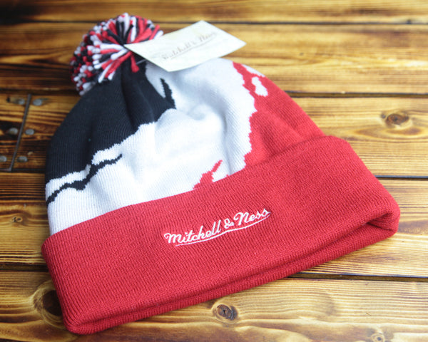 Chicago Bulls Mitchell & Ness Multi Color Cuffed Knit Hat