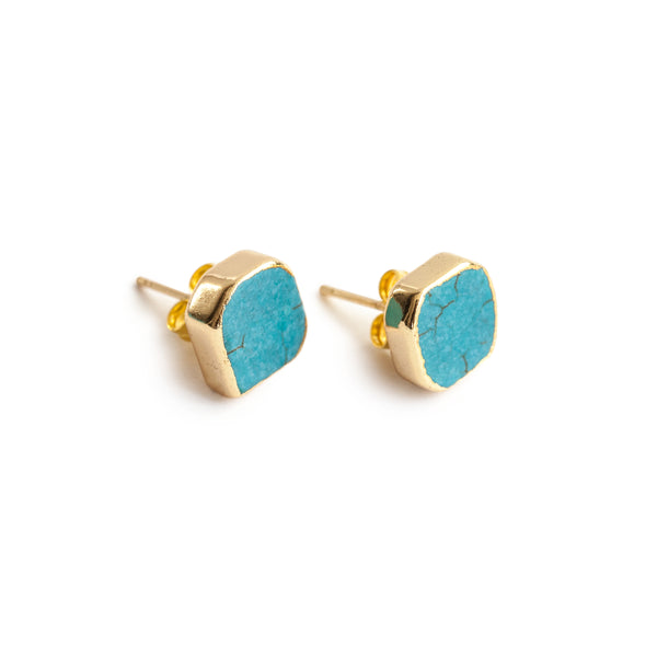 Eden by Sight Turquoise Earrings