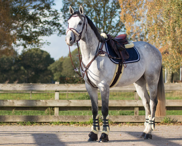 Ontario All-Purpose Girth Pony and Cob sizes