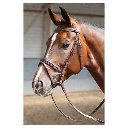 Harry's Horse Bridle Soft Brown