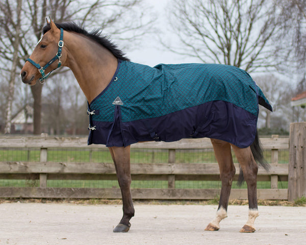 Cob and Pony size Fleece lined turnout blanket
