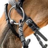 Pony Size Athena Bridle detail