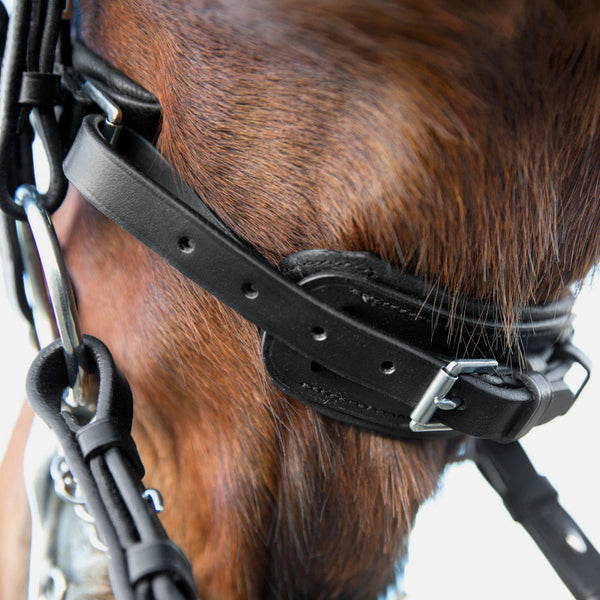 Horze Laelia Wymouth Dressage Bridle