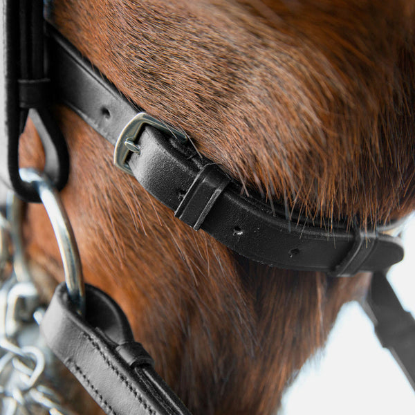 Full and Cob Size Weymouth Bridles