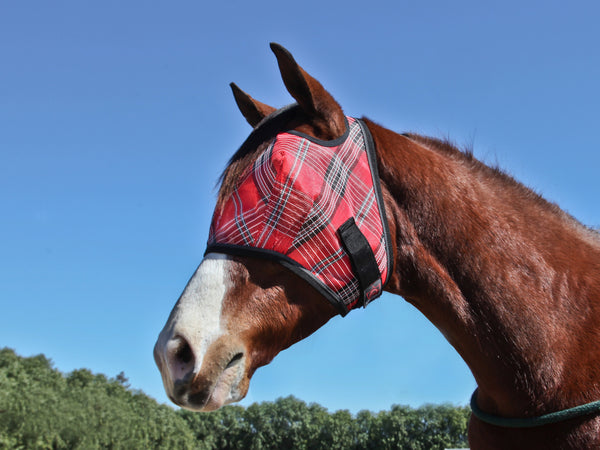 Cob and pony fly mask in red